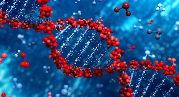 DNA DİZİLİMİ MAVİ